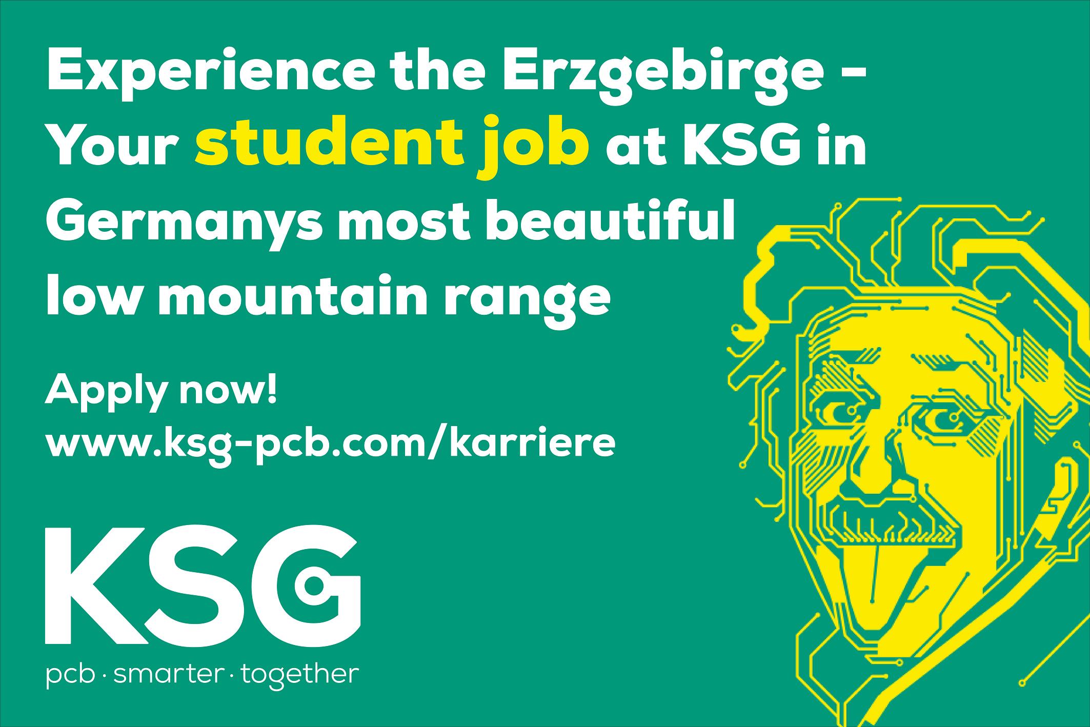 Oportunități De Angajare Pe Perioada Verii In Germania!